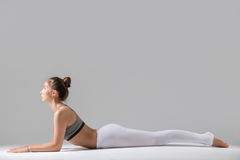 Young woman in Ardha bhudjangasana pose, grey studio background Royalty Free Stock Image