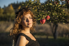 Young woman as cat on Halloween picking apples from trees Stock Image