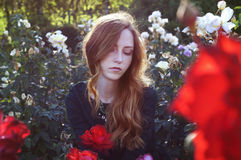 Young woman with auburn hair sitting in the rose garden stock photos