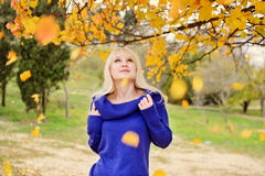 Young woman in autumn. Beautiful blonde woman walking outdoors in autumn royalty free stock images