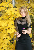 Young woman in autumn forest. With small pink flower stock images