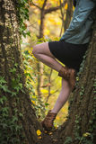 Young woman in autumn forest. Attractive young woman leaning on a tree at autumn forest Royalty Free Stock Photos