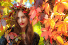 A young woman in an autumn forest with leaves in her hair Stock Images