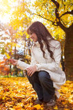 Young woman in autumn forest. On sunny day royalty free stock photography