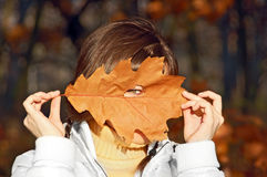 Young woman with autumn leaf Stock Images