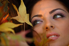 Young woman with autumn leaves. Close up royalty free stock photography
