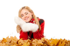 Young woman with autumn leaves Royalty Free Stock Image