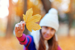 Young woman with autumn leaves.  stock photos
