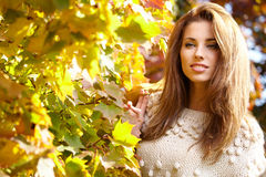 Young woman with autumn leaves. In hand and fall yellow maple garden background royalty free stock image