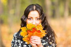 Young woman with autumn leaves in hand and fall yellow maple garden background Stock Image