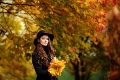 Young woman with autumn leaves in hand and fall yellow maple garden background. Woman with autumn leaves in hand and fall yellow maple garden background Royalty Free Stock Image