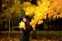Woman with autumn leaves in hand and fall yellow maple garden background. Young woman with autumn leaves in hand and fall yellow maple garden background Royalty Free Stock Image