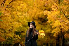 Woman with autumn leaves in hand and fall yellow maple garden background. Young woman with autumn leaves in hand and fall yellow maple garden background Stock Image