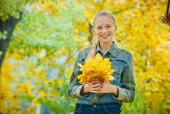 Young woman with autumn leaves. In hands and fall yellow maple garden background Royalty Free Stock Photography