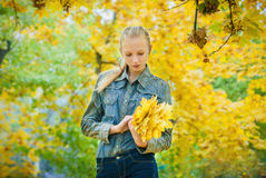 Young woman with autumn leaves. In hands and fall yellow maple garden background Royalty Free Stock Image