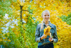 Young woman with autumn leaves. In hands and fall yellow maple garden background Stock Image