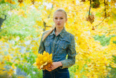 Young woman with autumn leaves. In hands and fall yellow maple garden background Stock Images
