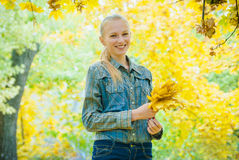 Young woman with autumn leaves. In hands and fall yellow maple garden background Royalty Free Stock Images