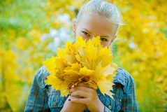 Young woman with autumn leaves. In hands and fall yellow maple garden background covering her face Royalty Free Stock Photography