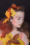 Young woman with autumn make up and leaves on head and her body. Young beautiful woman with autumn make up and leaves on head and body stock photography