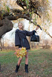 Young woman in autumn park. Glamour girl in autumn park royalty free stock photos