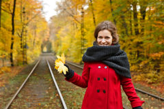 Young woman in autumn park Royalty Free Stock Photos