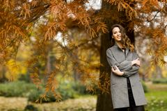 Young woman in the autumn park. Pertty young woman in the autumn park Royalty Free Stock Image