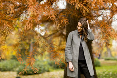 Young woman in the autumn park. Pertty young woman in the autumn park Stock Images