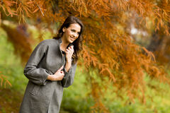 Young woman in the autumn park. Pertty young woman in the autumn park Stock Image