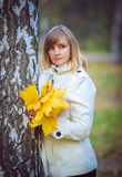 Young woman in an autumn park Royalty Free Stock Image
