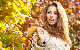 Young  woman  in the autumn park Stock Photos