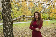 Young woman in autumn. Royalty Free Stock Photography