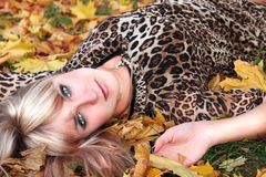 Young woman on the background of autumn leaves Royalty Free Stock Photo