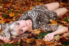 Young woman on the background of autumn leaves Stock Images