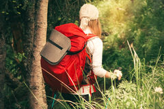 Young Woman with backpack hiking outdoor in forest Royalty Free Stock Photo