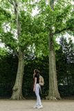 A young woman with a backpack stands between the trunks of trees and looks up at the green leaves stock photography