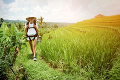 Young woman with backpack walking across green field. Intentional sun glare Stock Image
