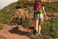 Young woman backpacker climbing mountain Royalty Free Stock Image