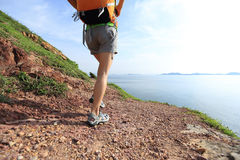 Young woman backpacker hiker walking on seaside mountain Royalty Free Stock Image