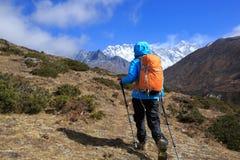 Woman backpacker trekking on himalaya mountains royalty free stock images