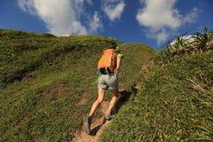 Young woman backpacker walking on seaside mountain Stock Image