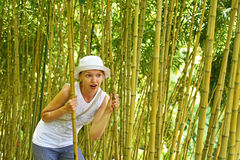 Young woman in the bamboo thickets. Madeira island Stock Photos