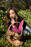 Young woman with basket of eggs picking flowers Royalty Free Stock Image