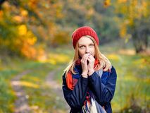 Woman basking hands. Young woman basking hands after stroll in autumn park Stock Photography