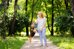 Young woman with Beagle dog in the summer park. Obedient pet with his owner practicing jump command Royalty Free Stock Photography