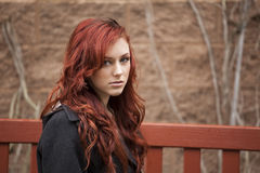 Young Woman with Beautiful Auburn Hair royalty free stock photo