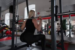 Young woman with a beautiful body doing heavy exercises in the gym with a metal fingerboard. Girl in great shape doing squats. In a fitness studio. Side view stock images