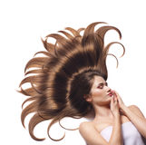 Young woman with beautiful brown hair Stock Photography