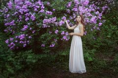 Young woman near a lilac bush. stock images