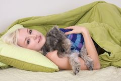 Young woman in bed playing with schnauzer dog Stock Photography
